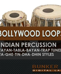 600-Bollywood-Loops