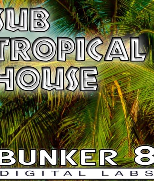 subTropicalHouse